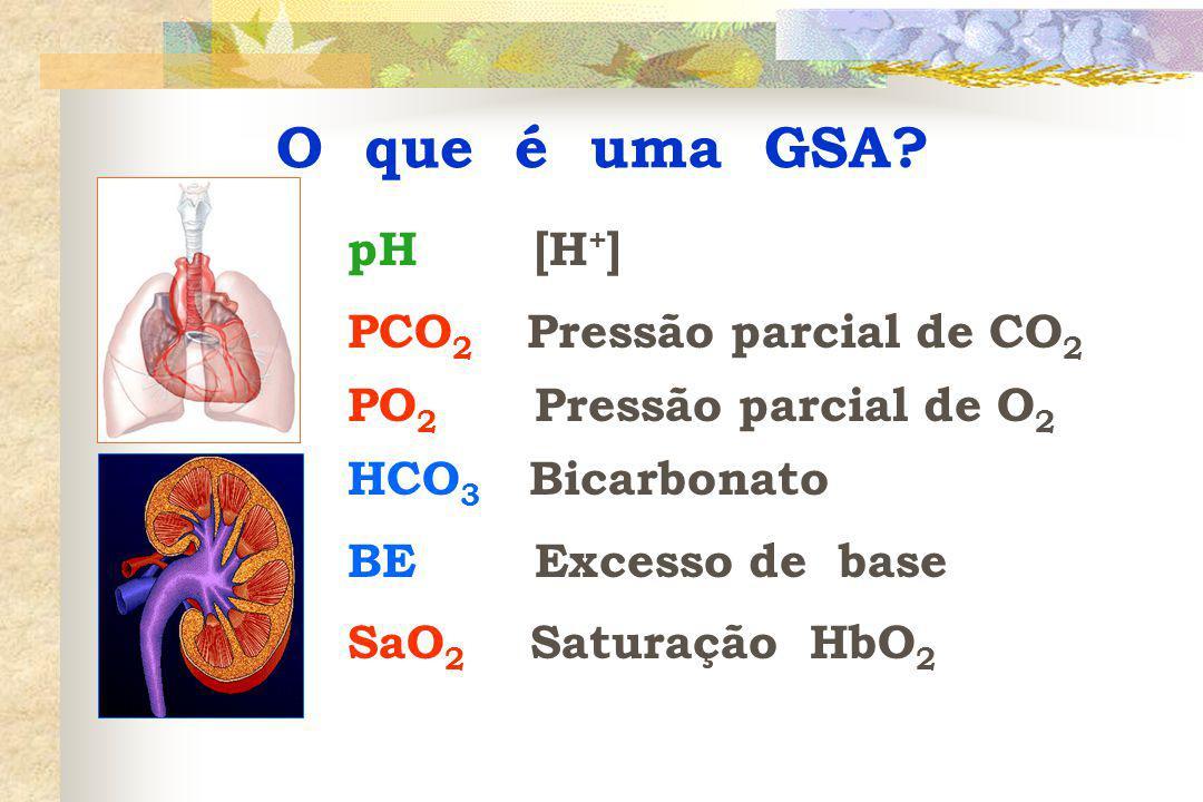 O que é uma GSA pH [H+] PCO2 Pressão parcial de CO2